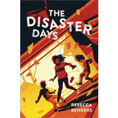 The Disaster Days eBook